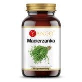 Yango Macierzanka 90 k 510 mg układ oddechowy