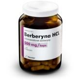 Hauster Berberyna 500 mg 60 kap